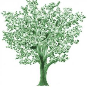 money_tree_color